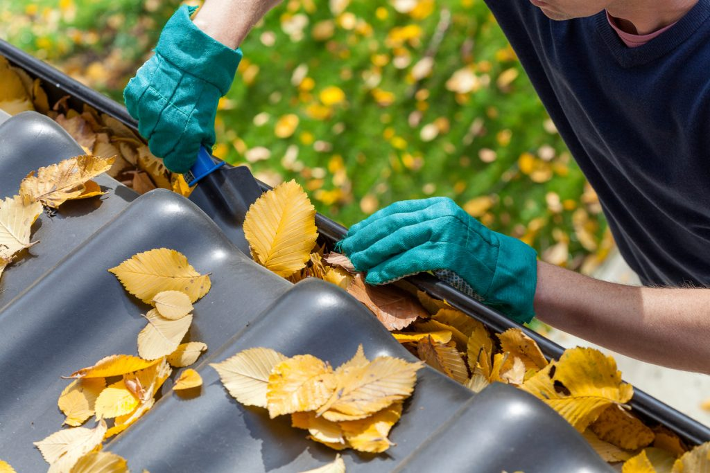 JM Roofing | 4 DIY Projects You Can Do in A Weekend
